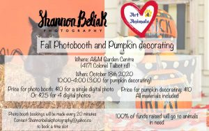 Fall Photos - Pumpkin Decorating